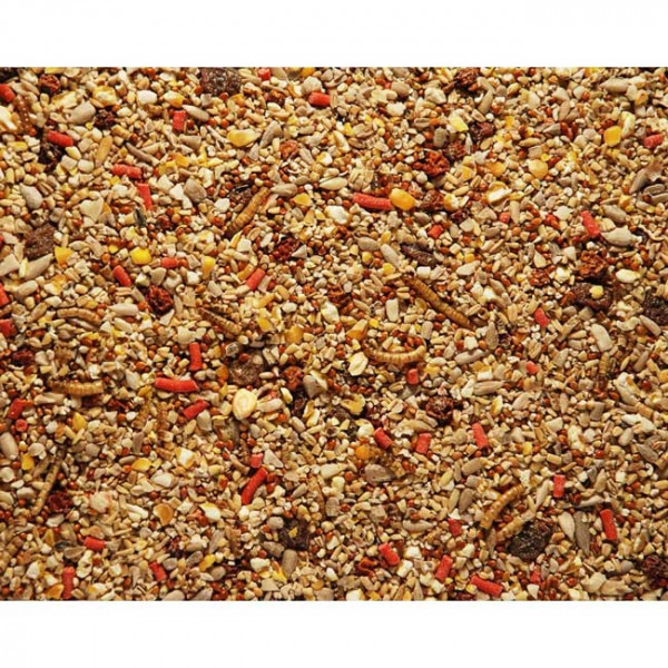 Spring / Summer mix Wild Bird Seed Mixes British Bird Food - UK wild bird food suppliers, bird seed and garden wildlife