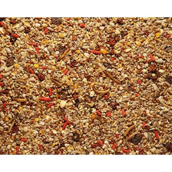 Spring / Summer mix Wild Bird Seed Mixes British Bird Food - UK wild bird food suppliers, bird seed and garden wildlife