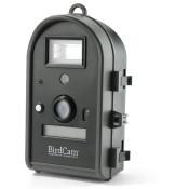 Wildlife Cameras (6)