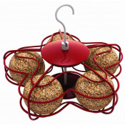 Special Bird Feeders (20)