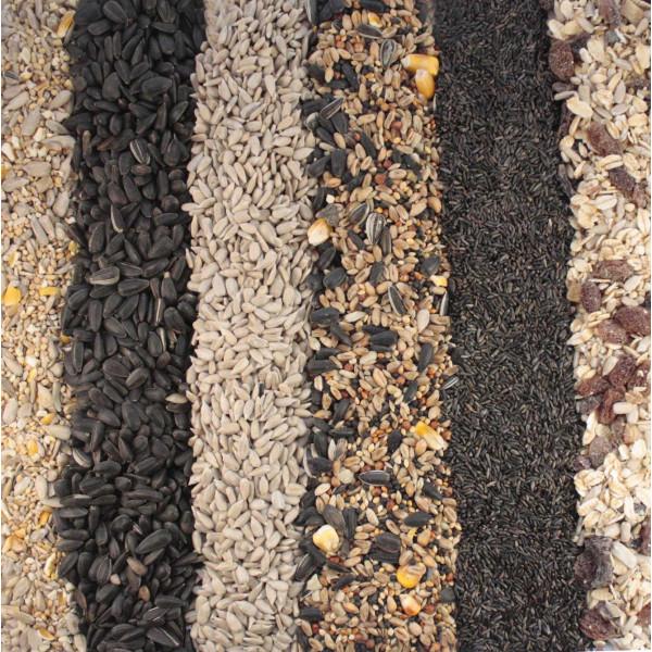 Seed Variety Pack Wild Bird Seed Mixes British Bird Food - UK wild bird food suppliers, bird seed and garden wildlife