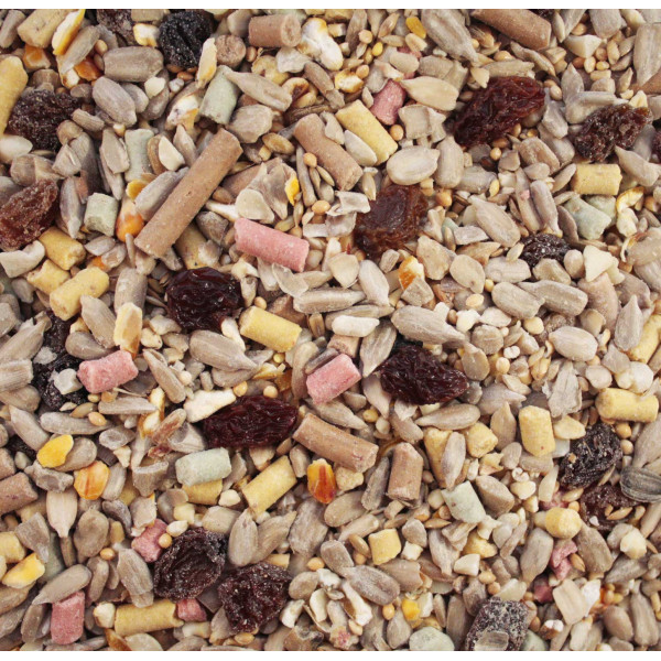 Autumn Mix - High Energy Wild Bird Seed Mixes British Bird Food - UK wild bird food suppliers, bird seed and garden wildlife