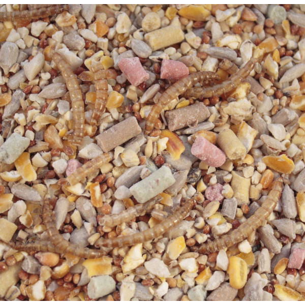 Winter mix - high energy Wild Bird Seed Mixes British Bird Food - UK wild bird food suppliers, bird seed and garden wildlife