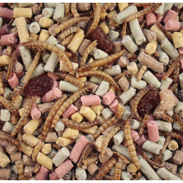 Ultimate High Energy Mix for wild birds Wild Bird Seed Mixes British Bird Food - UK wild bird food suppliers, bird seed and garden wildlife