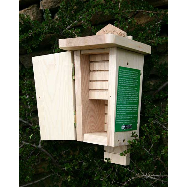 Bat box - double chamber Bats British Bird Food - UK wild bird food suppliers, bird seed and garden wildlife