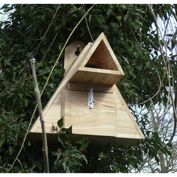 Little Owl Box Wild Bird Nest Boxes British Bird Food - UK wild bird food suppliers, bird seed and garden wildlife