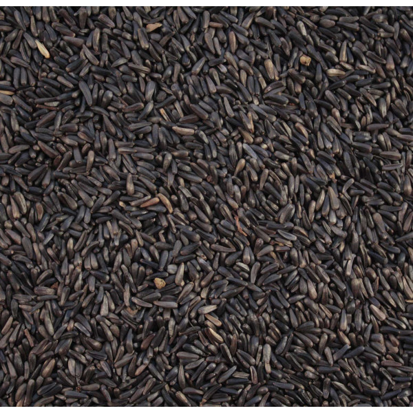 Niger Seeds Wild Bird Straight Seeds British Bird Food - UK wild bird food suppliers, bird seed and garden wildlife