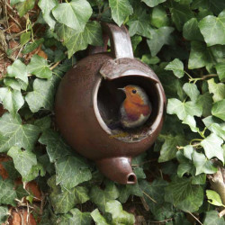 Teapot nest box