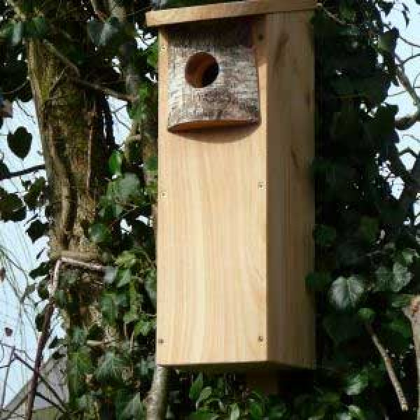 Woodpecker nest box Wild Bird Nest Boxes British Bird Food - UK wild bird food suppliers, bird seed and garden wildlife
