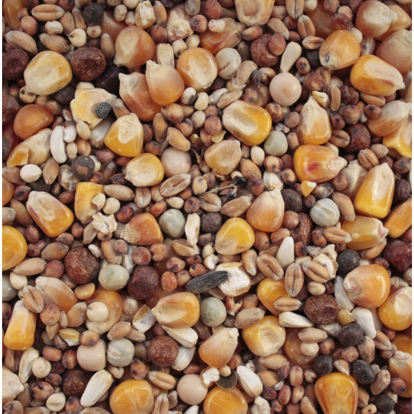 Large bird food Wild Bird Seed Mixes British Bird Food - UK wild bird food suppliers, bird seed and garden wildlife