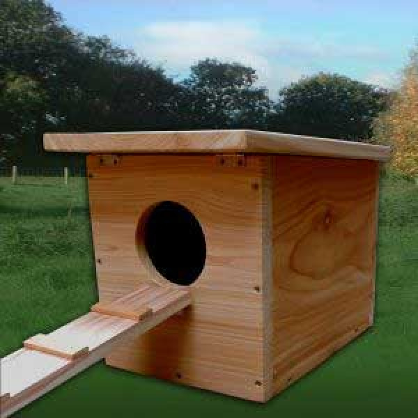 Duck House Wild Bird Nest Boxes British Bird Food - UK wild bird food suppliers, bird seed and garden wildlife