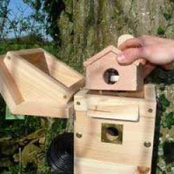 Colour camera multi nest box