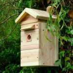 Colour camera multi nest box