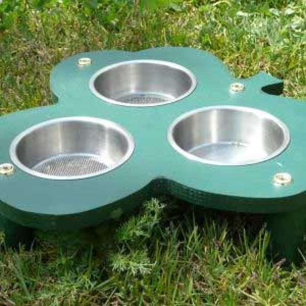 Clover ground feeder