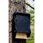1 FF Bat box Bats British Bird Food - UK wild bird food suppliers, bird seed and garden wildlife
