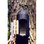 1 FD Bat Box Bats British Bird Food - UK wild bird food suppliers, bird seed and garden wildlife