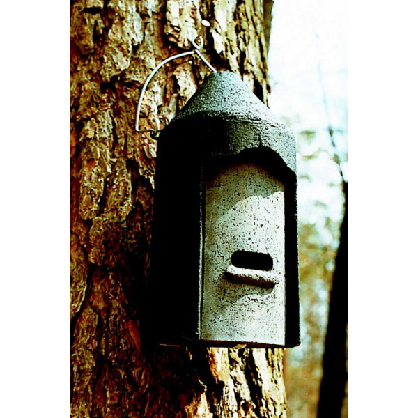 2F General Purpose Bat Box Bats British Bird Food - UK wild bird food suppliers, bird seed and garden wildlife