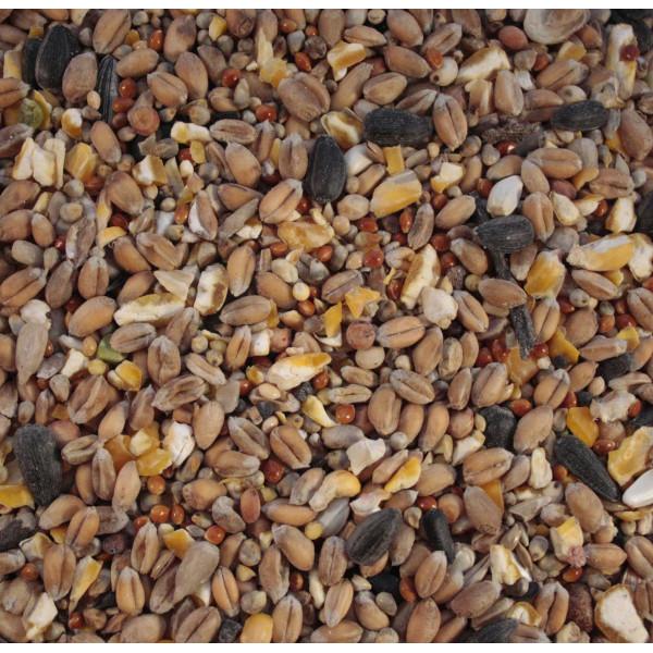 Wild bird food - Standard mix Wild Bird Seed Mixes British Bird Food - UK wild bird food suppliers, bird seed and garden wildlife