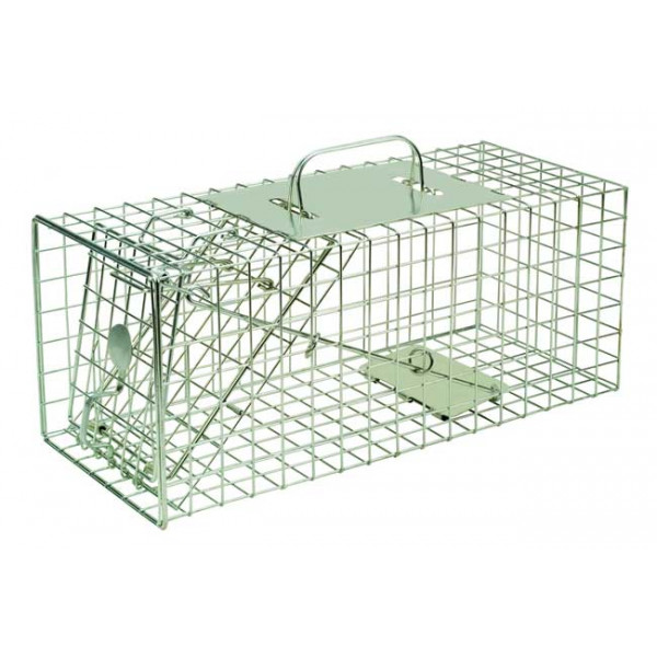 Squirrel Cage Trap Protection and Deterrents British Bird Food - UK wild bird food suppliers, bird seed and garden wildlife
