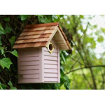 New England Nest box Wild Bird Nest Boxes British Bird Food - UK wild bird food suppliers, bird seed and garden wildlife