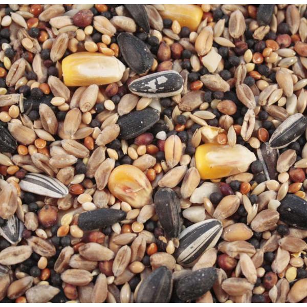 Wild bird food Premium Mix Wild Bird Seed Mixes British Bird Food - UK wild bird food suppliers, bird seed and garden wildlife