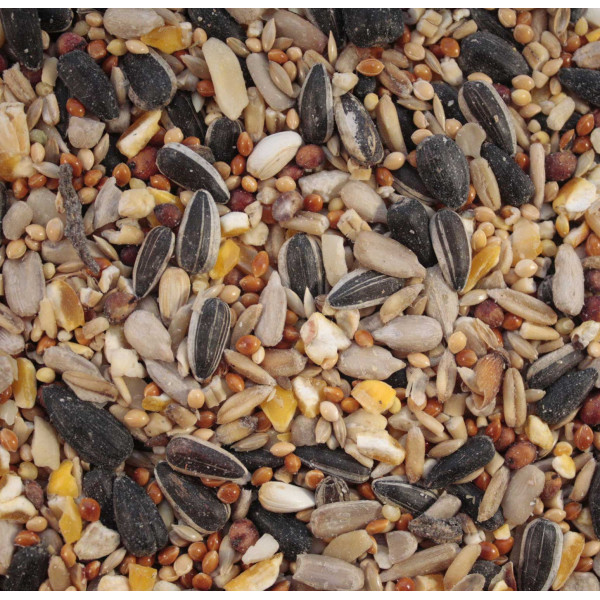 Wheat Free Mix Wild Bird Seed Mixes British Bird Food - UK wild bird food suppliers, bird seed and garden wildlife
