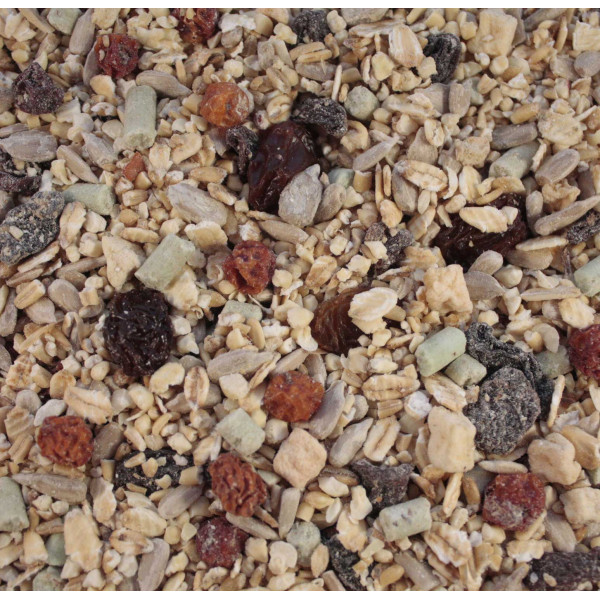 Blackbird and Thrush Food Wild Bird Seed Mixes British Bird Food - UK wild bird food suppliers, bird seed and garden wildlife