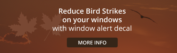 Reduce Bird Strikes on your windows with window alert decal
